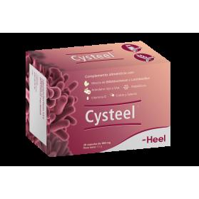 Cysteel Heel 480mg probiótico sistema urinario 28 cápsulas