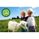 Capricare 2 800 gr leche infantil de cabra de continuación