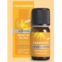 Pranarom esencia para difusor bienestar en casa 10 ml con ylang-ylang y rosa de damasco