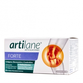 Artilane Forte ampollas 15 viales monodosis 30 ml