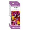 Equisalud Flowers of Life Insomnio 15 ml