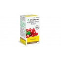 Arkopharma cranberry 45 arkocápsulas