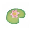 Oli and Carol Water Lily mordedor caucho Natural 100 % Hevea Ecológico