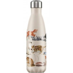 Chilly's Bottle Emma...